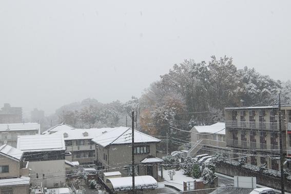 161124 雪01