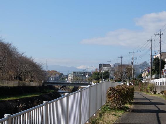 161203 散歩02