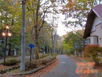 2016yuruiro_1109_k002