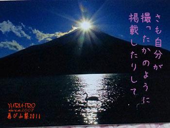 2016yuruiro_1111_k005