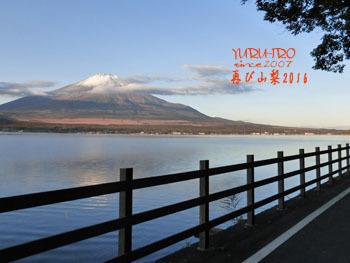 2016yuruiro_1111_k006