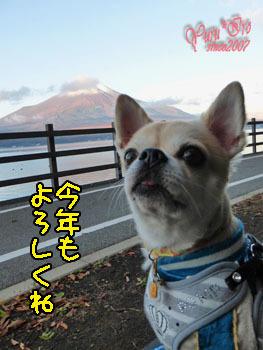 2017yuruiro0101_k001