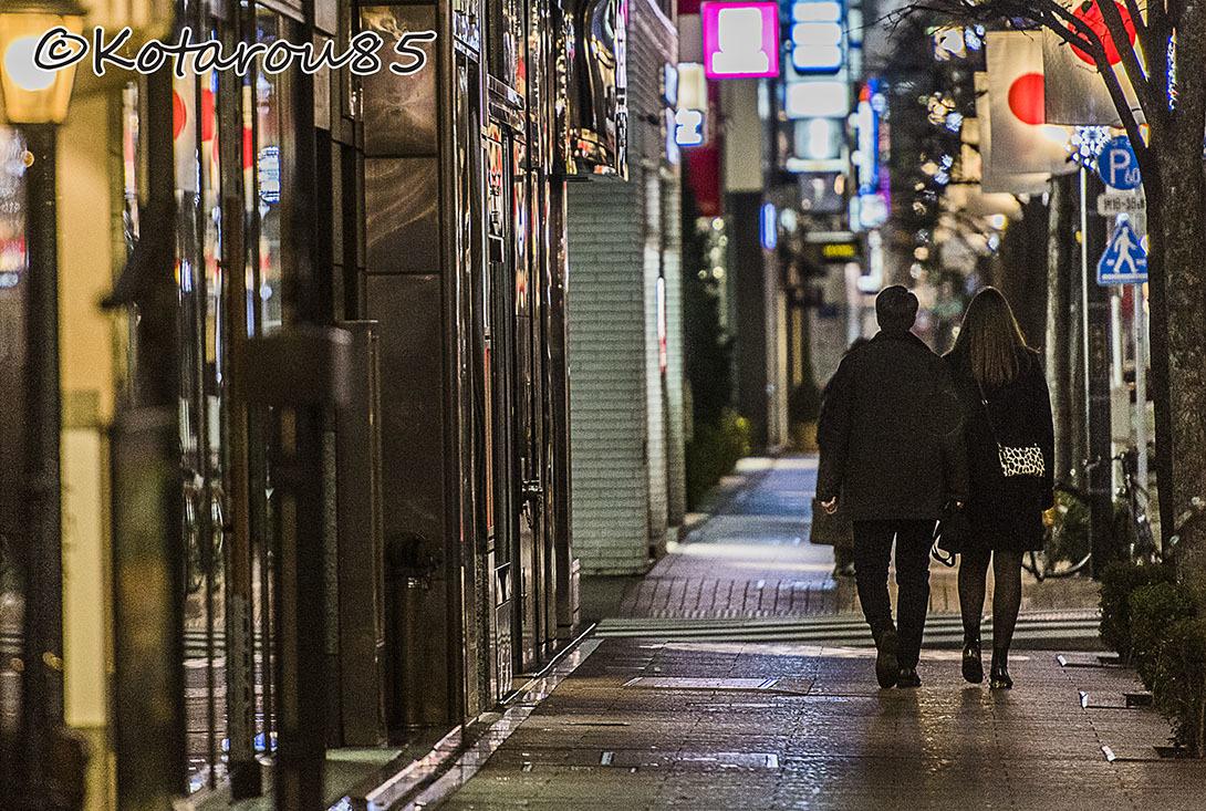 新年の並木通り2 20170101