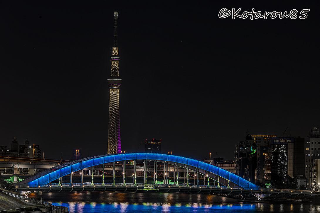 正月の永代橋2 20170103
