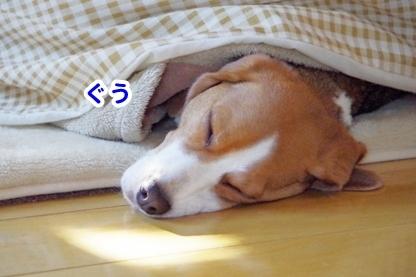 起きて 2