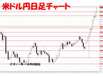 20161119米ドル円日足