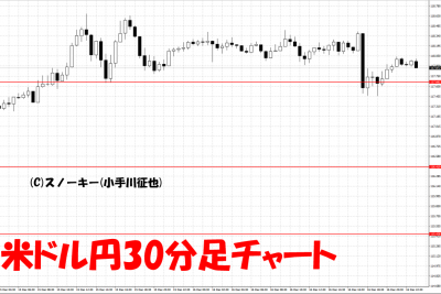 20161218米ドル円30分足チャート