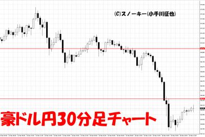 20161218豪ドル円30分足チャート