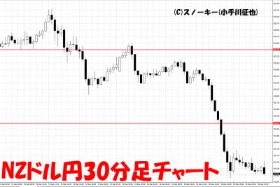 20161218NZドル円30分足チャート