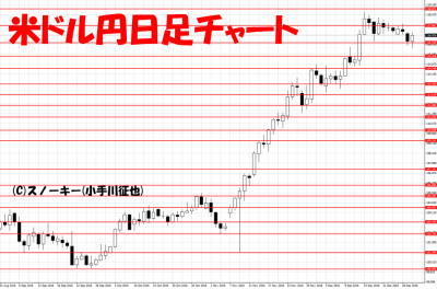 20161231米ドル円日足