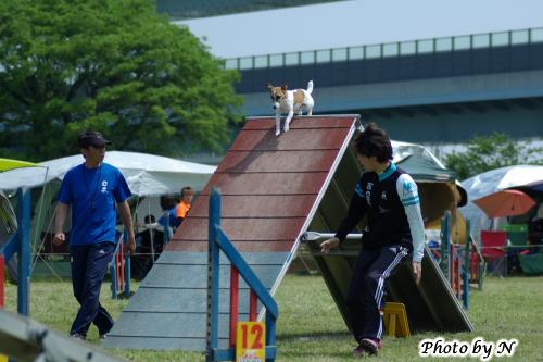Nakaminami_IMG_4809.jpg