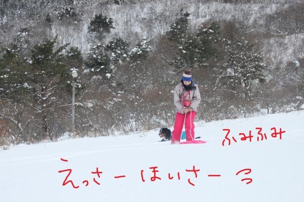 20170115_170116_0075.jpg