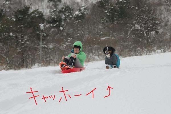 20170115_170116_0121.jpg