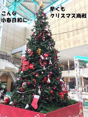 201611121.jpg