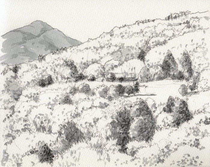 山間のゴルフ場 グリザイユ (700x556)