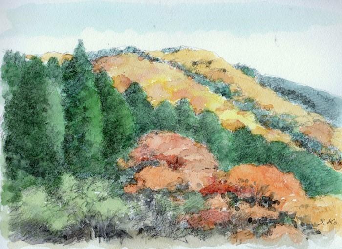 兵庫 秋の山 (700x511)