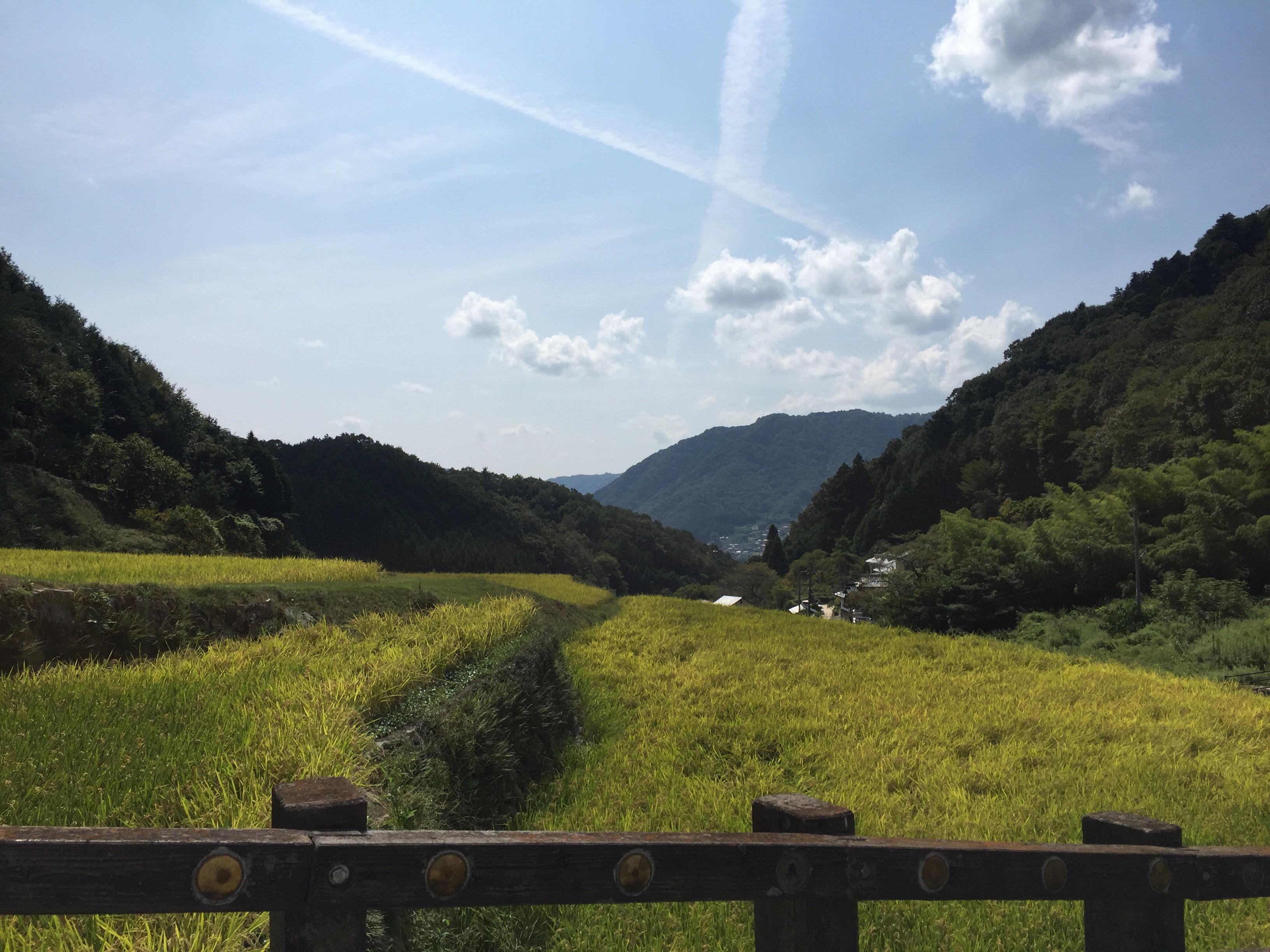 1609備中松山麓