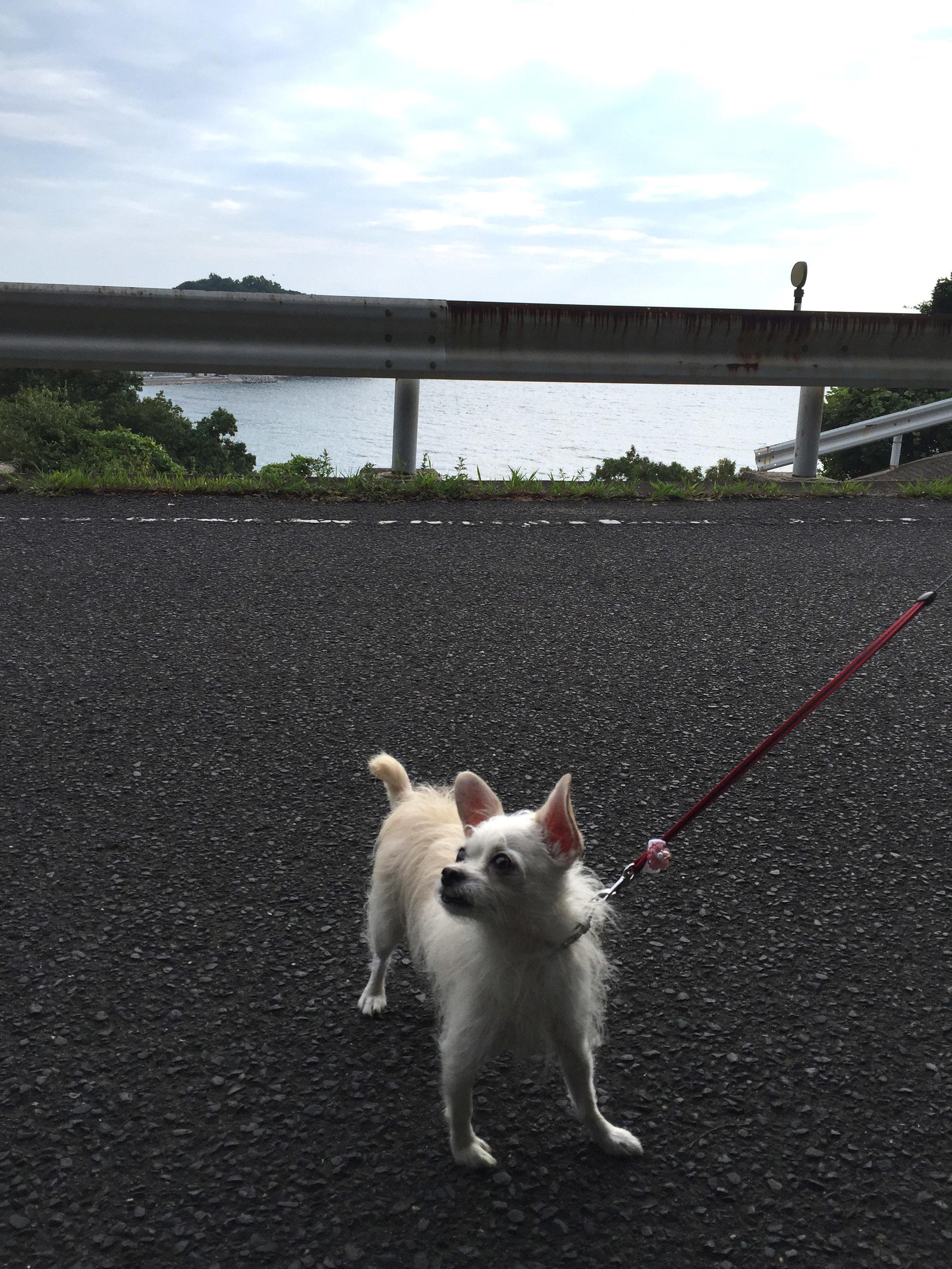 1609津田でお散歩01