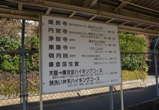 170102-121353-北鎌倉20170102 (103)_R