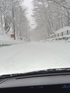 201701-snow_03.jpg