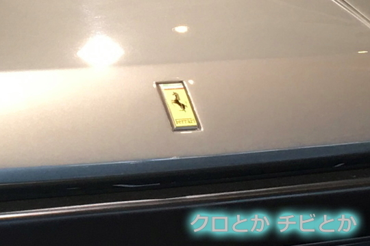 540px20161110_etc-01.jpg