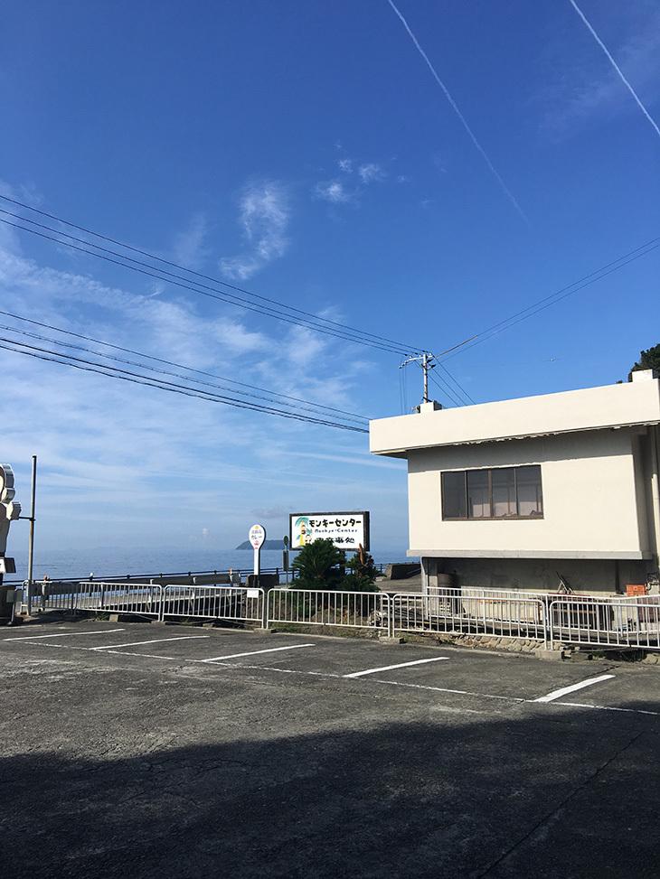 raiawa_5.jpg