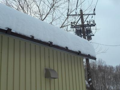 積雪55センチ