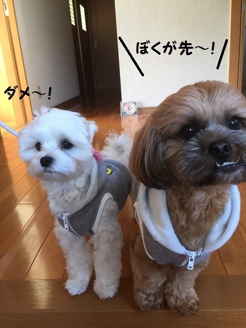 20161129ぼく
