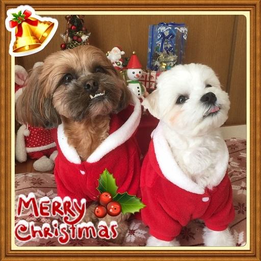 20161220クリスマス-1
