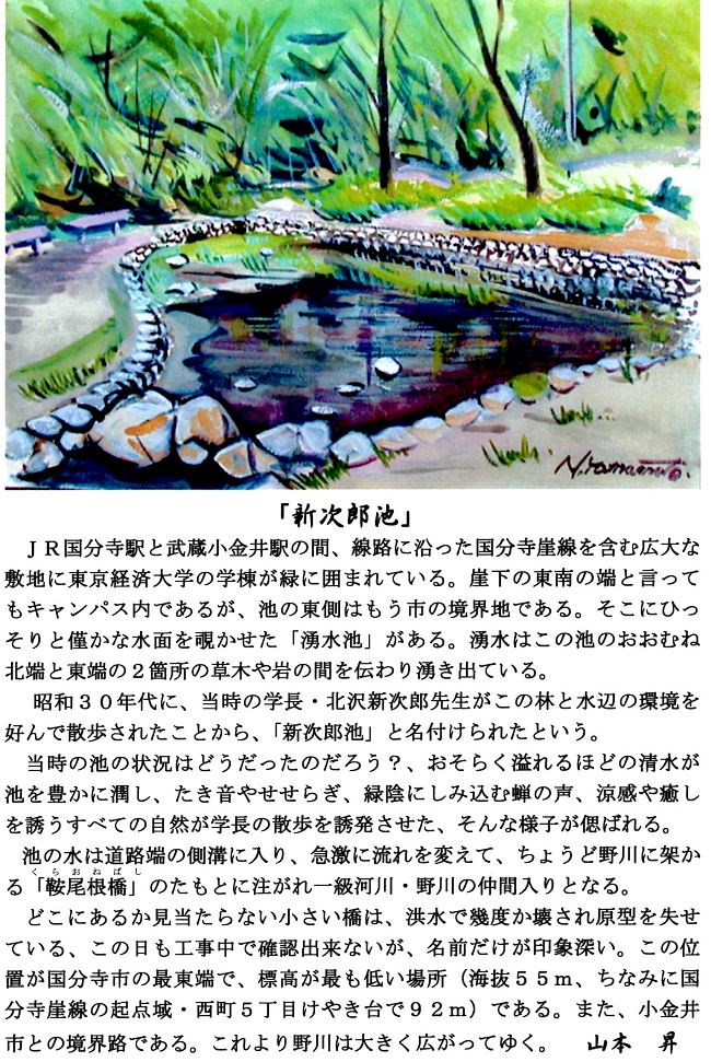 2月会報国分寺崖線1