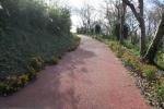 草山公園4