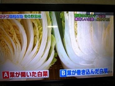 hakusai4_2016122008595737a.jpg