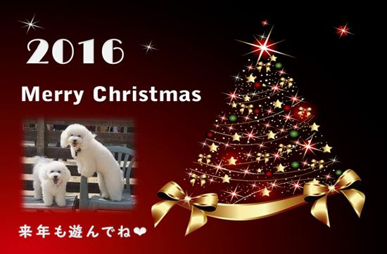 ミル&ララ 赤 2016クリスマスカード