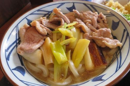 丸亀製麺㊵ (6)