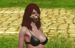 自由の風の革仮面