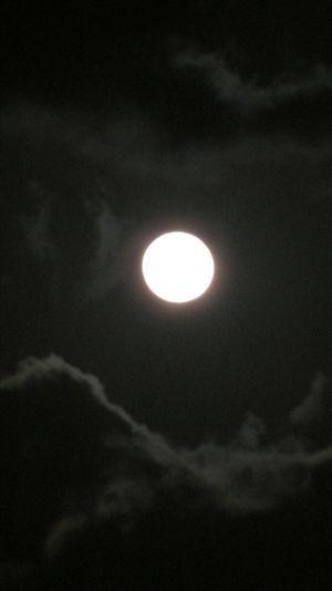 一六夜 013_R