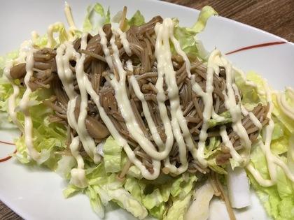 キノコと白菜のサラダ