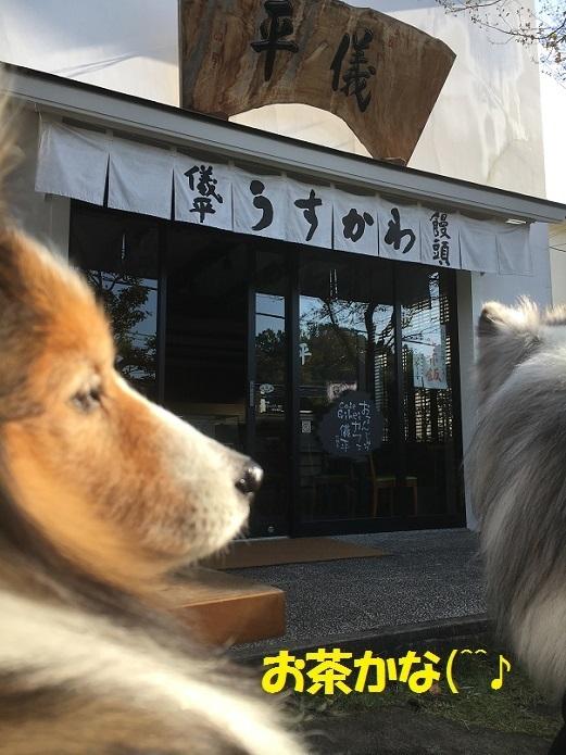 円覚寺992