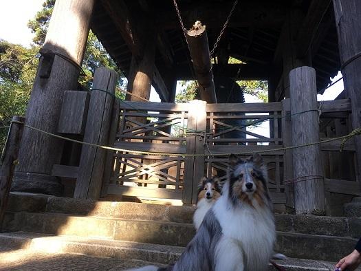 円覚寺98