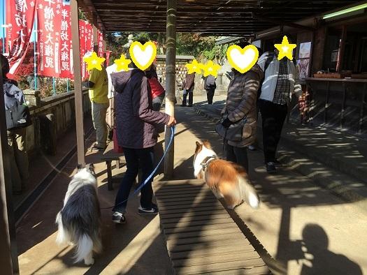 鎌倉998