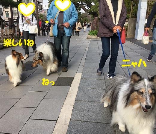 鎌倉995