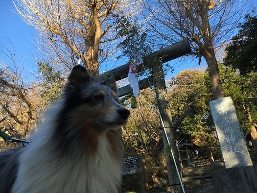 源氏山91