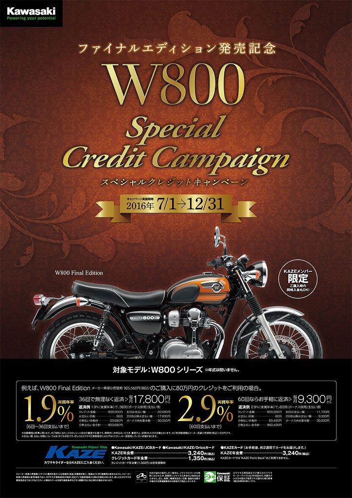 2016w800-campaign.jpg