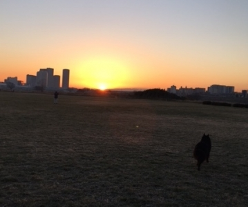 sunrise20173.jpg