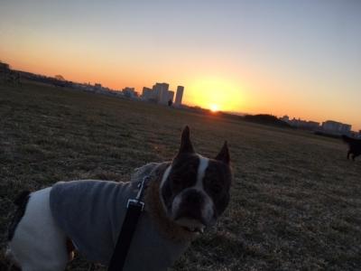 sunrise20174.jpg