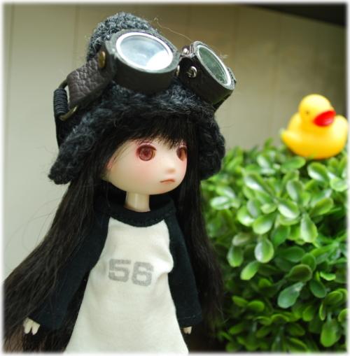 custom-soy003.jpg