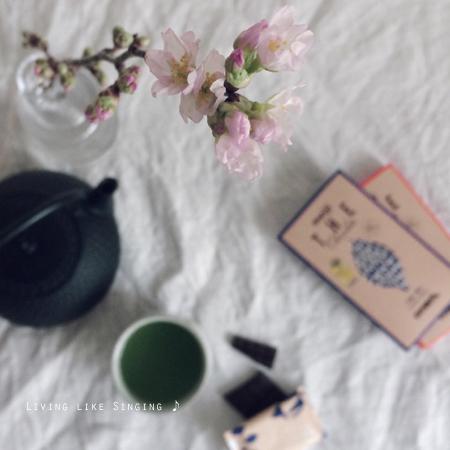 山桜とチョコレート