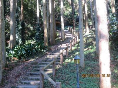 伏姫。八房籠穴への階段