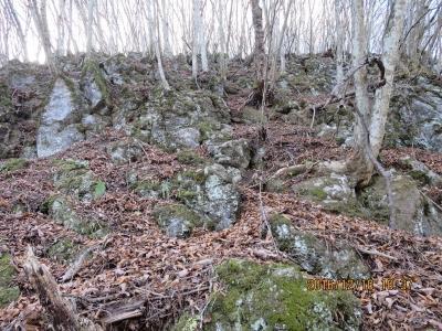 第2の露岩帯