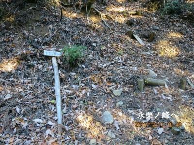 林道から永栗ノ峰へ取付き